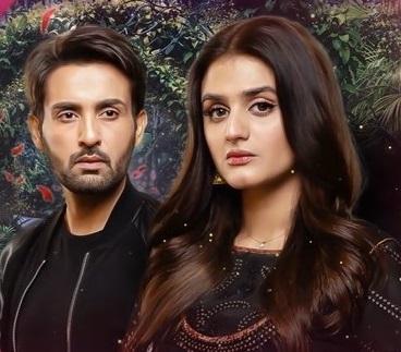 مسلسل باكستاني حب بلا نهاية مترجم
